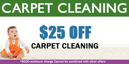 BNK Chem-Dry Carpet Cleaning Special