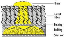 purt-diagram-bnk-chem-dry